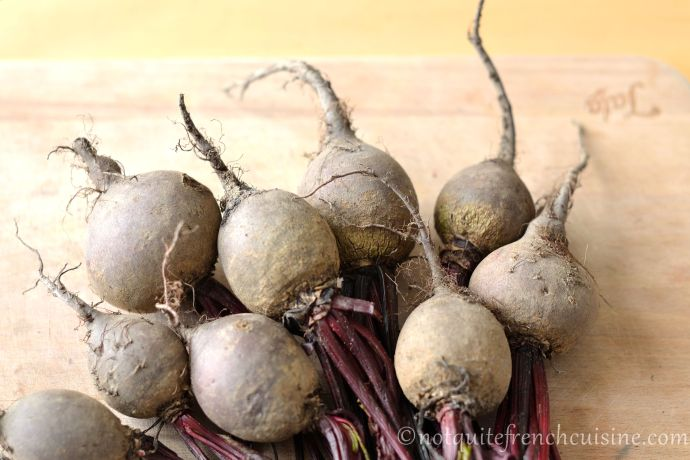 How to grow beet greens or shoots easily